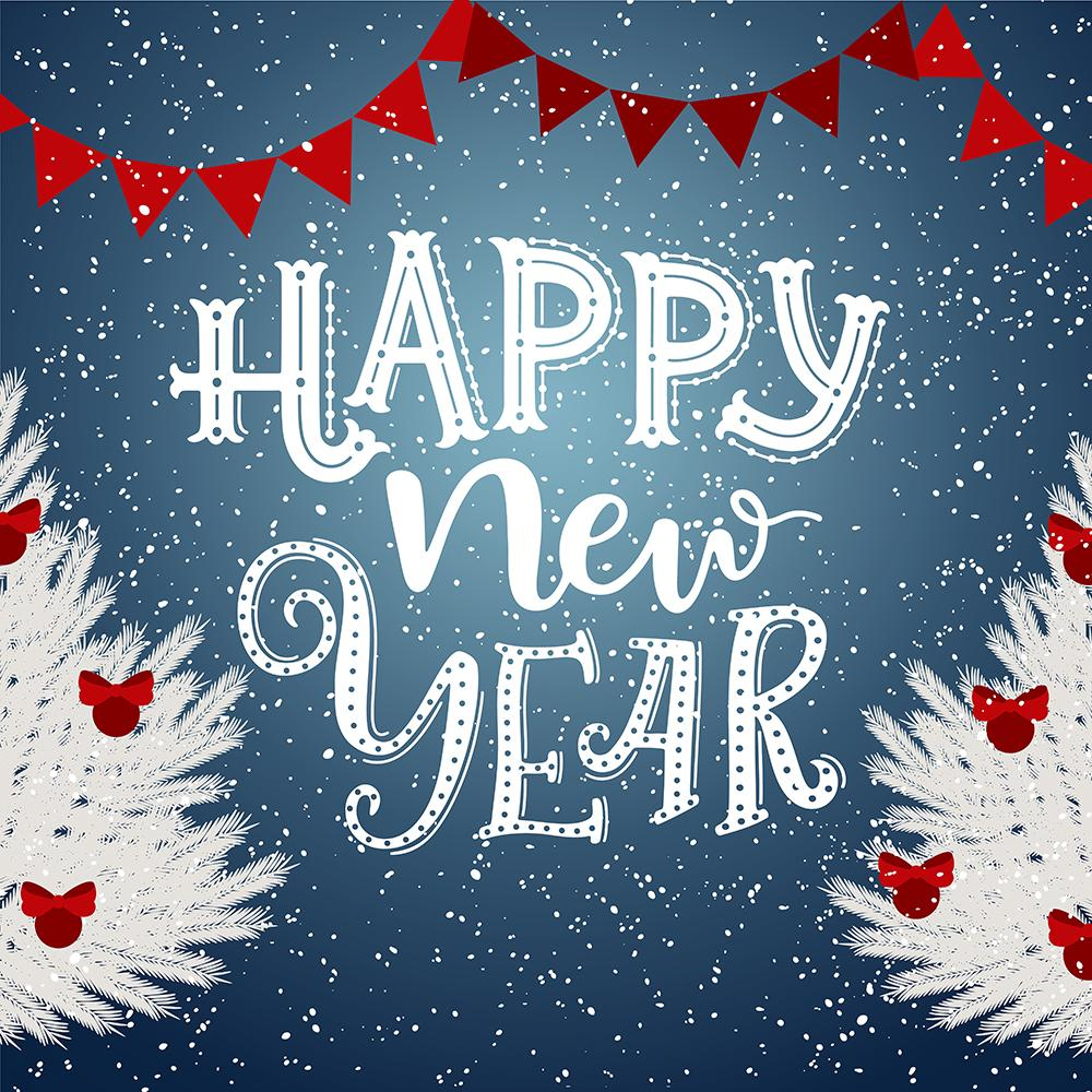 Happy New Year Christmas Photography Backdrop  DBD-19323