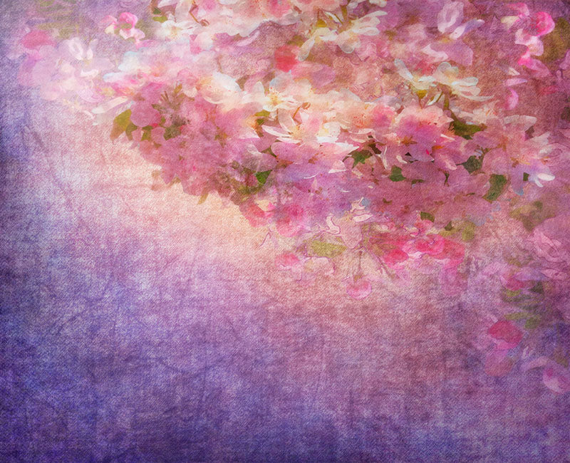 Sakura Backdrop Purple Background for Photography NB-025