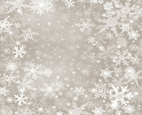 Snowflakes Winter Photography Backdrop for Photo Studio NB-149