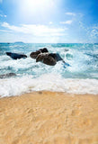 Beach Backdrop Summer Sea Beach Holiday Background S-2696