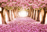 Scenic Backdrops Trees Parks Woodland Backdrops Pink Background S-2718