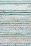 Wooden Backgrounds Green Backdrop Vintage Backdrop G-2932