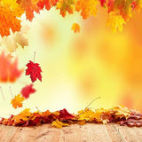 Autumn Yellow Maple Leaf Backdrops for Photography S-3136