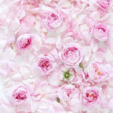 Flowers Backdrops Patterned Backdrops Flower Wall background Floor S-3174