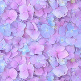 Floral Backdrops Patterned Backdrops Purple Background S-3175
