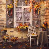 Fall Window Yellow Leaves Autumn Photography Backdrop S-3201