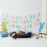 Easter Decorations Easter Eggs Bunny Photography Background S-3238