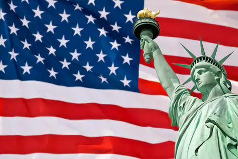 Independence Day USA Flag Liberaty Status Backdrop for Photography SH298