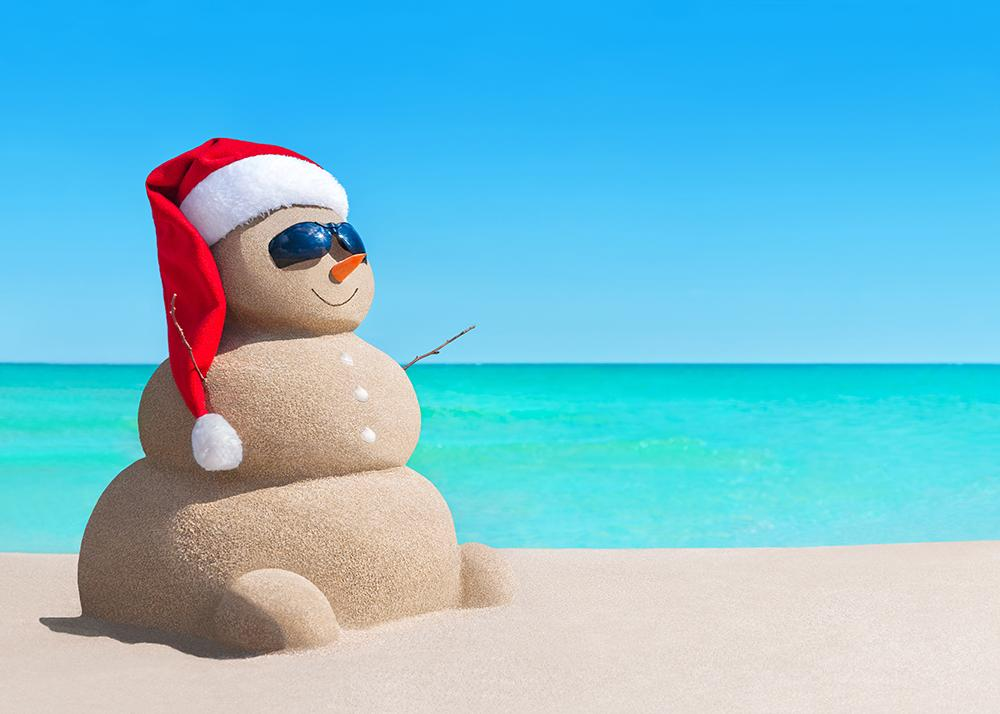 Sand Snowman Sea Summer Beach Backdrops DBD-19394