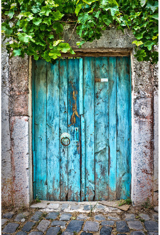 Blue Vintage Door Green Plants Photo Booth Backdrop ZH-48