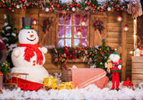 Christmas Winter Snowman Backdrop for Photography DBD-H19176