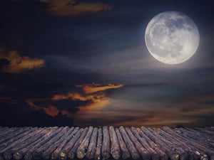 Halloween Backdrops Festival Backdrops Night Moon