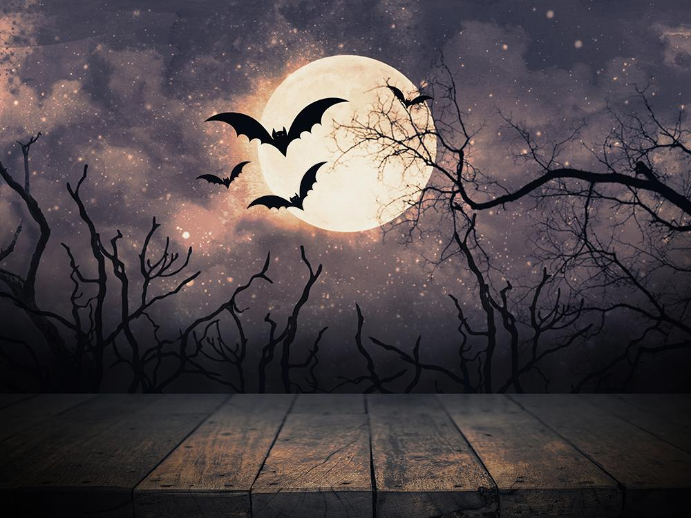 Halloween Night  Moon and Bats Photo Booth Backdrop DBD-H19004