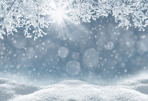 Winter White Snow Snowflake  Bokeh  Photo Booth Backdrop LV-1023
