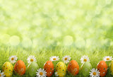 Easter Eggs Green Grass Backdrop for Photography LV-1311