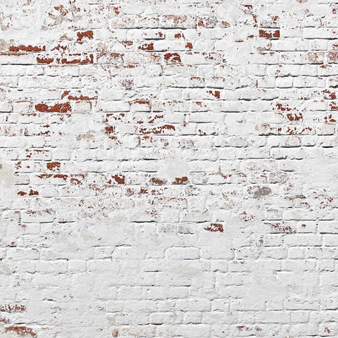 White Brick Wall Photography Backdrop for Studio LV-138