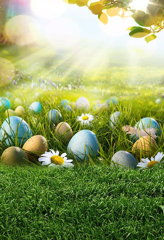 Easter Eggs Green Grass Sunshine Spring Backdrop for Photography LV-1715
