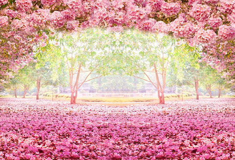 Floral Backdrop Pink Flowers Photography Background LV-455