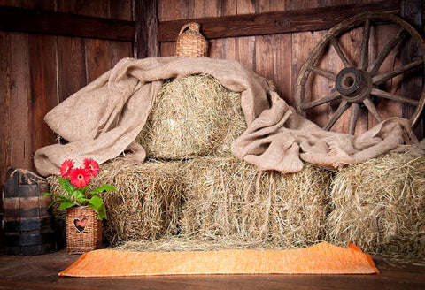 Old Barn Backdrop West Cowboy Vintage Wooden Barn Straw Backdrop LV-802