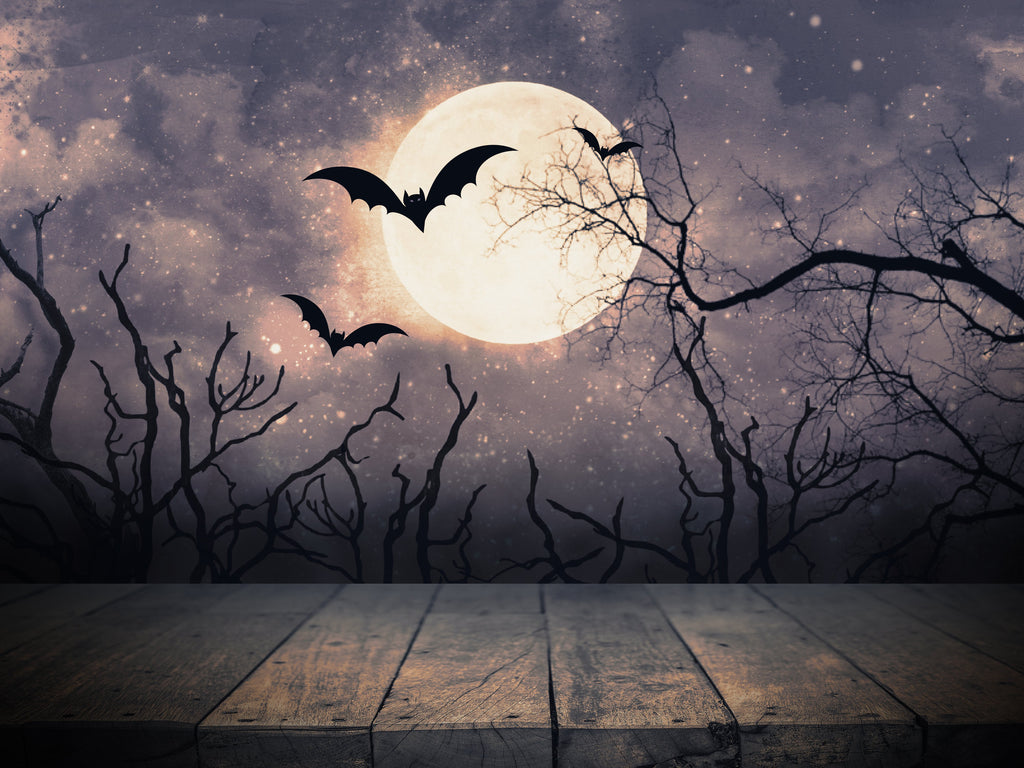 Moonlight Background Flying Bats and Trees Halloween Backdrops IBD-H19135