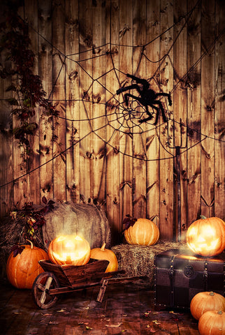 Pumpkin Spiderweb Wood Wall Halloween Backdrops for Photography DBD-19081