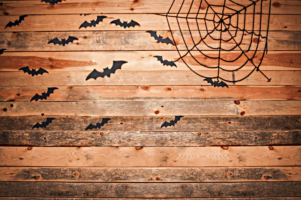 Wood Background with Spider Silk Halloween Backdrops IBD-H19147