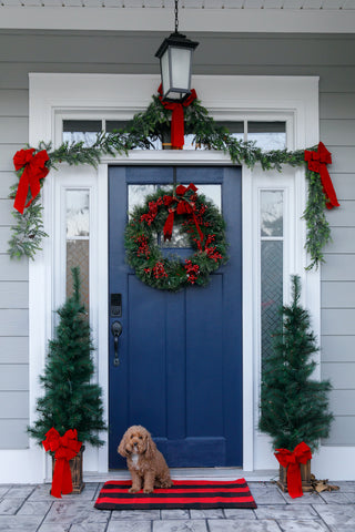 Dog in front of navy door decorated for the holidays