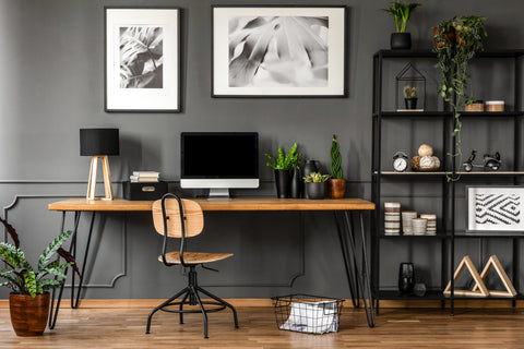 Bold grey office decorated with houseplants