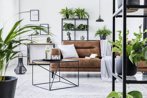 Stylish living room centered by a cozy brown suede couch accented by greenery and house plants