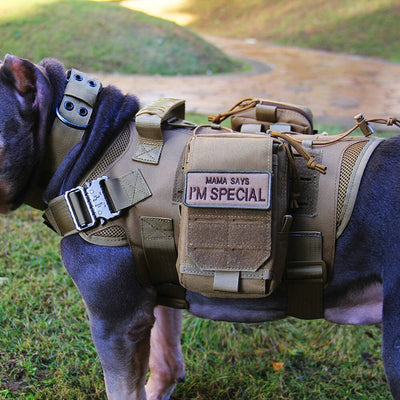 Nylon Tactical Service Dog Harness Heavy Duty Dog Training No Pull Dog Harness