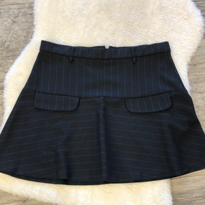 Gently used Zara Skirt Sz L