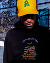 Load image into Gallery viewer, Saint Everywhere Hoodie