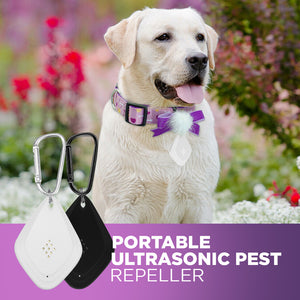 Portable Ultrasonic Pest Repeller