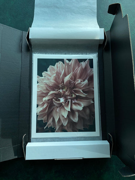 opening your fine art flower print packaging