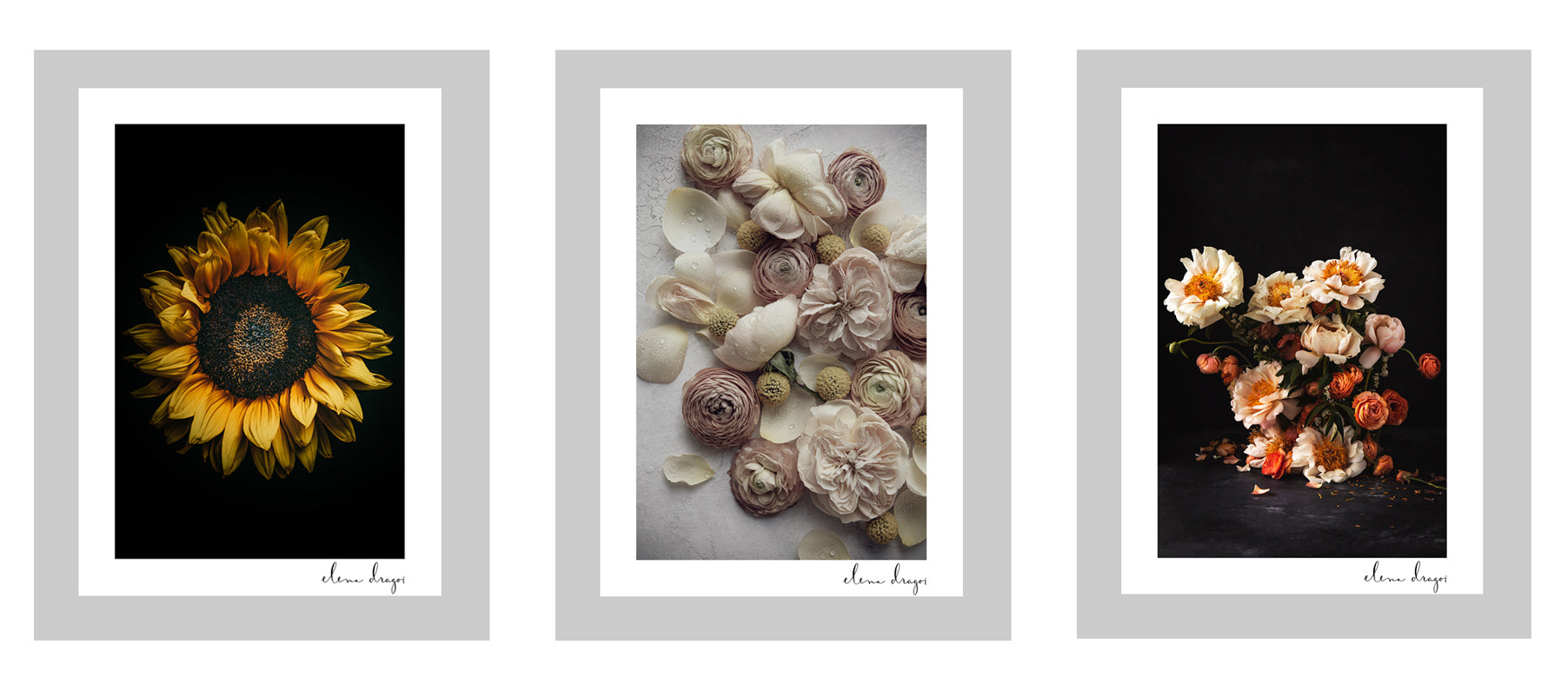 Seasonal floral art cards
