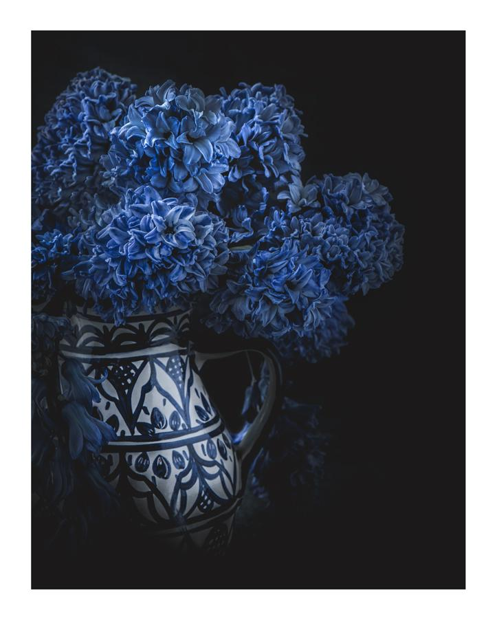 Born in Blue | Flower Prints | Elena Dragoi