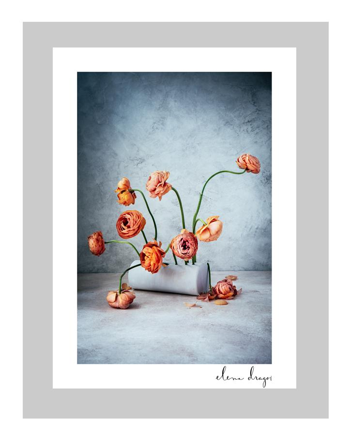 Perfectionism flower art cards | orange floral art cards | ELENA DRAGOI