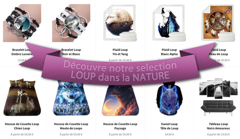Selection article loup nature