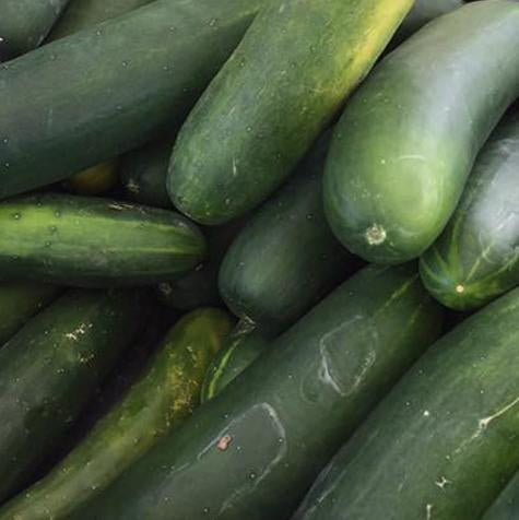 Brakely Farms Cucumber