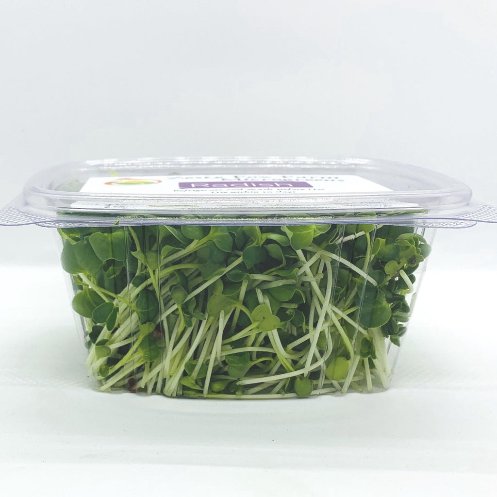 Zesty Fox Radish Microgreens