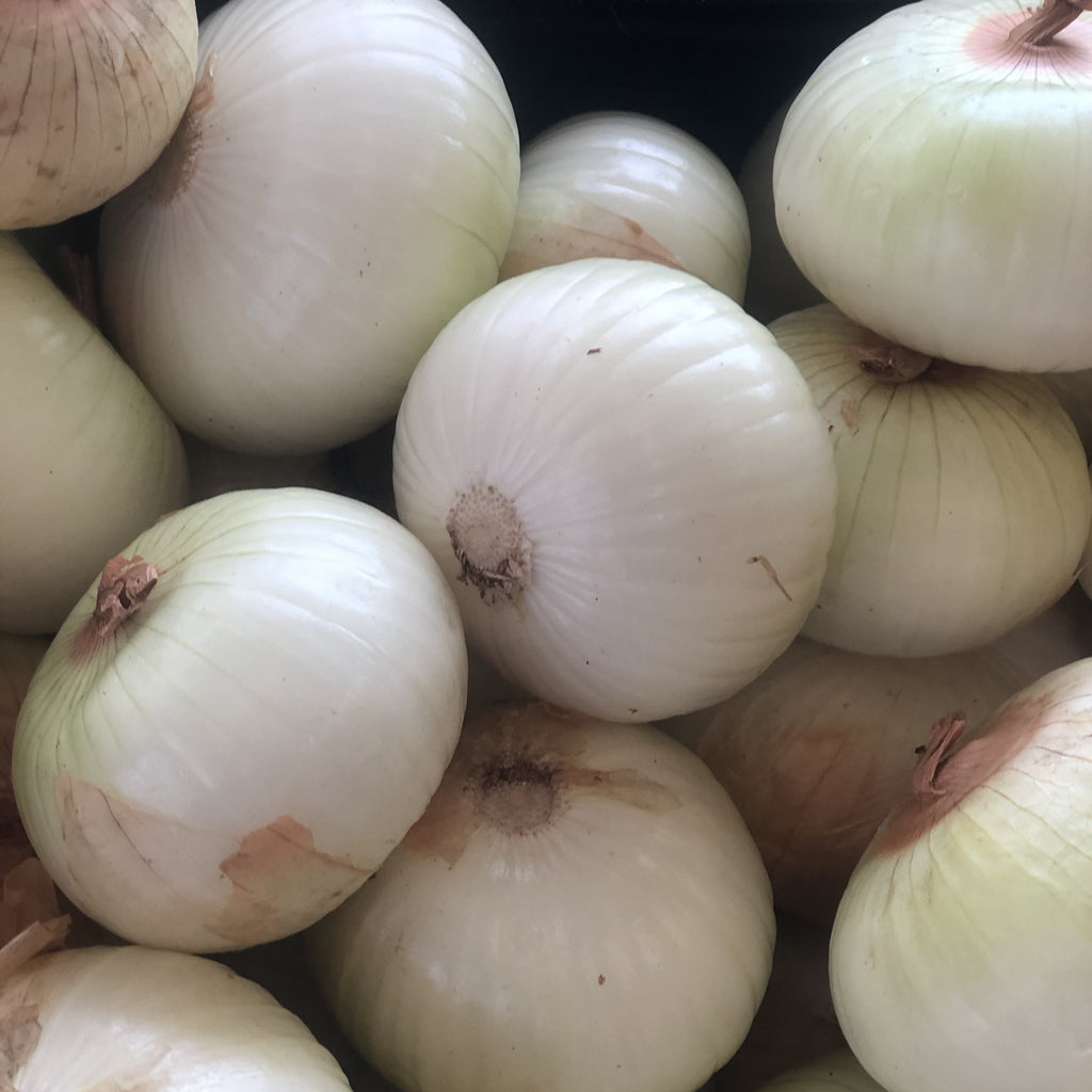 Young's Onions Selection
