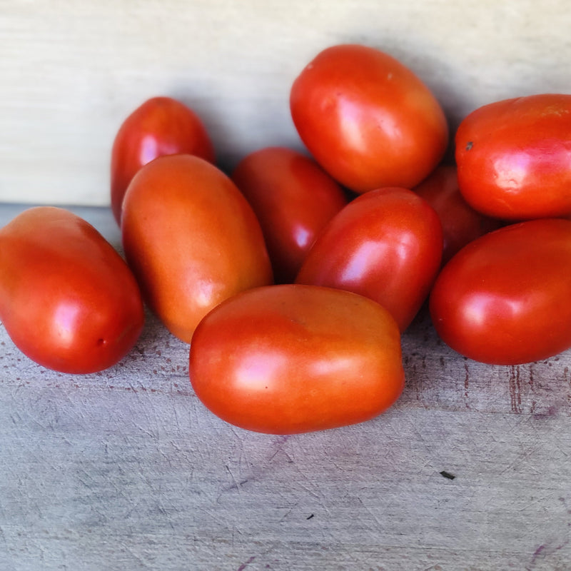 Young's Plum Tomato Basket