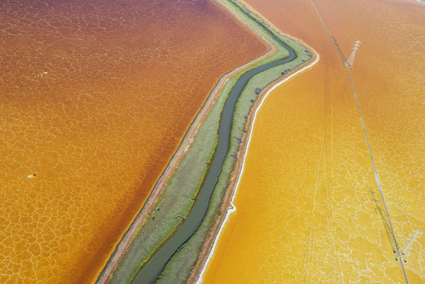 SAN FRANCISCO BAY SALT PONDS.  8633