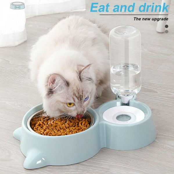 Pet Bowl with Water Bottle Dispenser