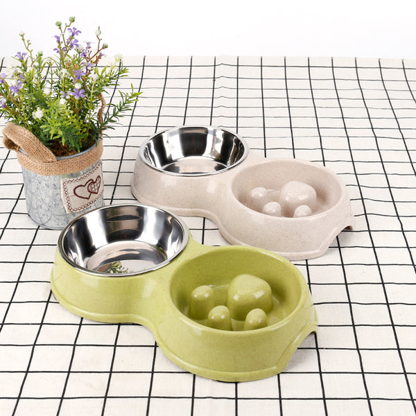 Pet Slow Feeder with Bowl