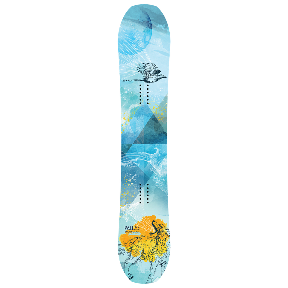 Hedonist Snowboard | Closeout Sale