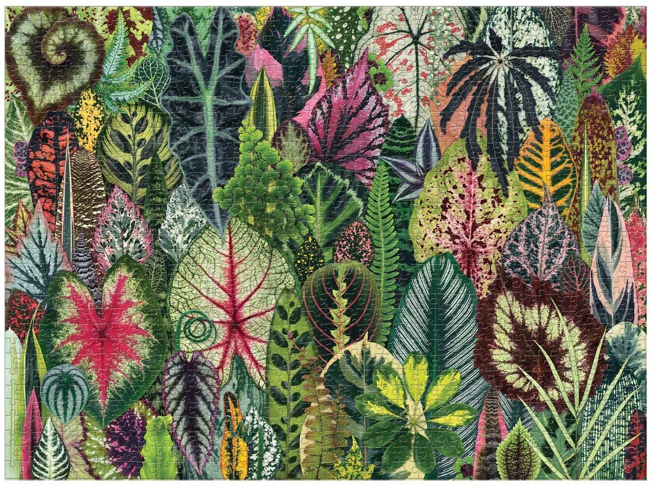 Galison Houseplant Jungle 1000 Piece Puzzle