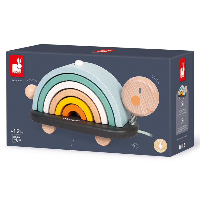 Janod Rainbow Turtle in box