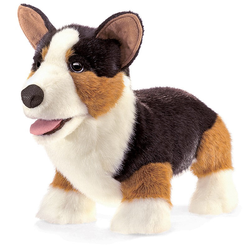 Folkmanis Corgi Dog Puppet at Little Sprout