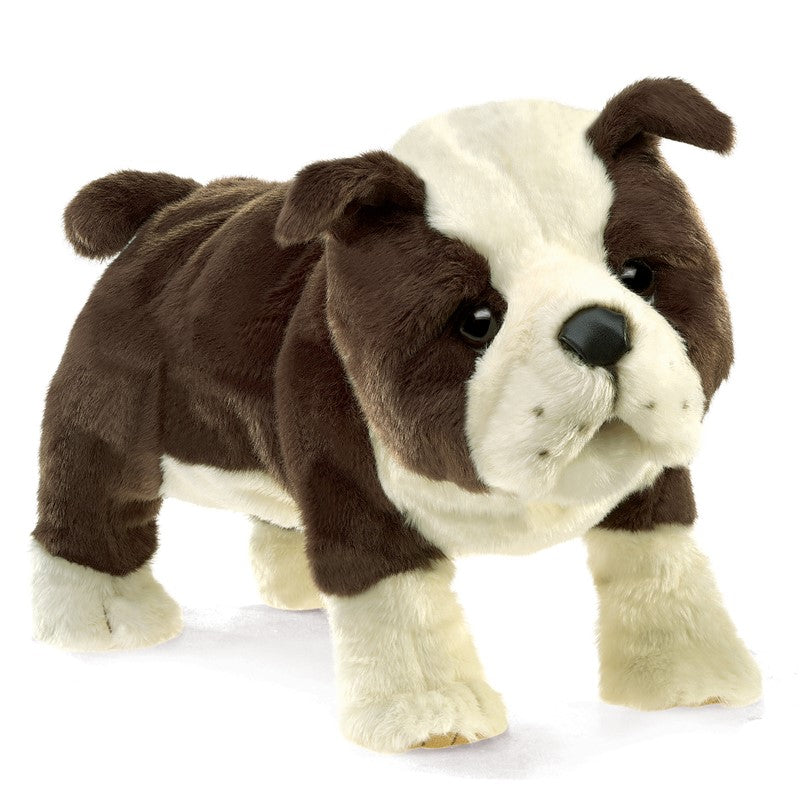 Folkmanis English Bulldog Puppy Puppet at Little Sprout